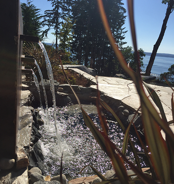 Pond-Waterfalls-Gig-Harbor-WA